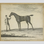 Camillus a Horse belonging to his Grace ye Duke of Bolton got by Fox & foal'd...